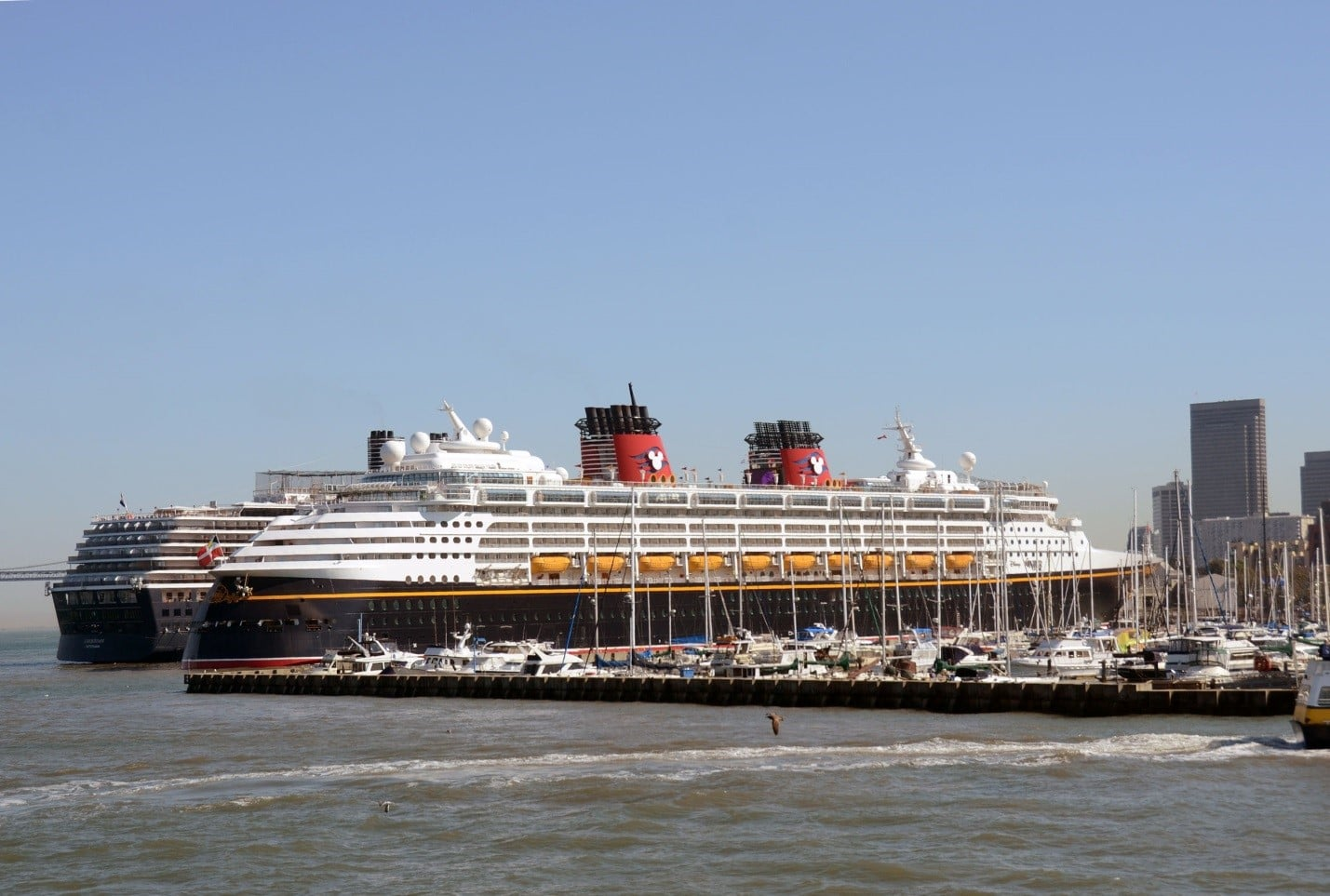 How Did Man on Disney Cruise Get Injured?
